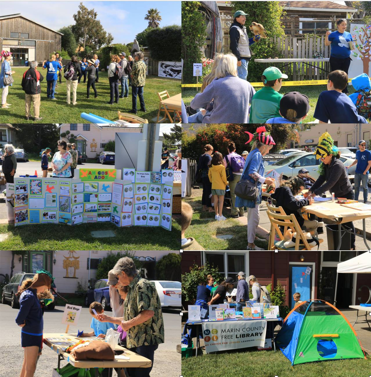 World Migratory Bird Day at the Point Reyes Birding & Nature Festival