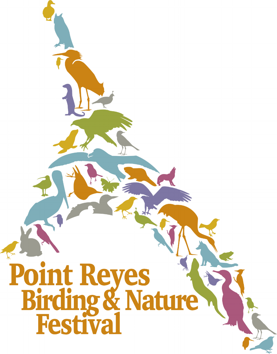 Family Programming at the Point Reyes Birding & Nature Festival/Programacion Familiar en el Festival Anual de Aves y Naturaleza Punto Reyes